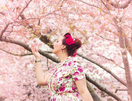 Rêve de Sakura